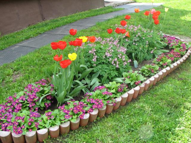 Фото красиво посаженных цветов 65