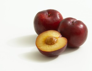 1305271405_rosemary-plum-02