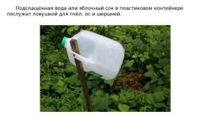 poleznye_sovety_dlja_doma_i_dachi_19_foto_16