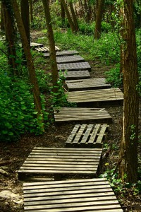 trail-through-the-wood-made-from-used-pallets
