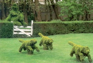 1314734734_topiary