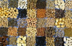 как-выбрать-семена-500x321