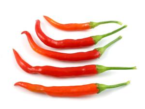 capsicum-chilli