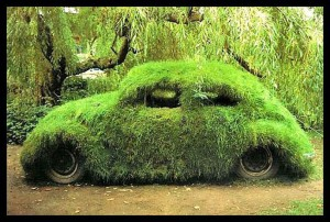 moss-covered-car
