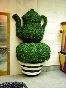 topiary_c_installed480x640