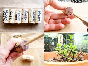 12-wine-cork-skewer-garden-marker-636