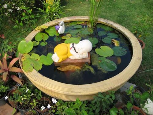 Мини-водоем в саду своими руками