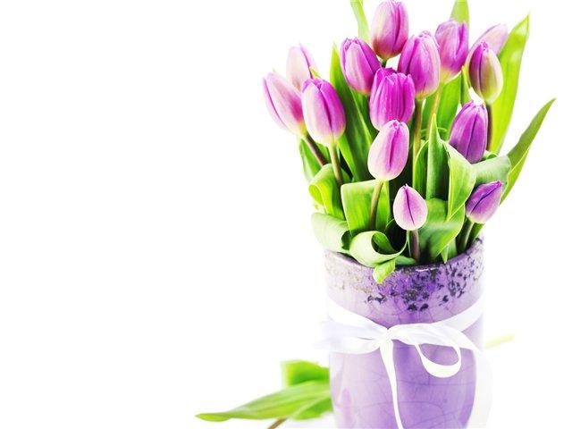 Почему луковицы тюльпанов мельчают