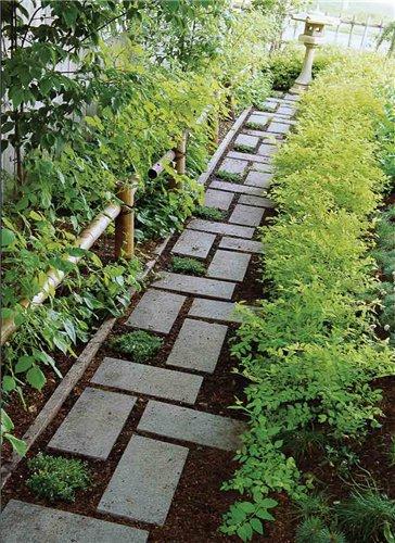 Форма для садовой дорожки своими руками фото 855