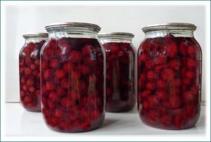 1310296019_cherries-in-brine-1