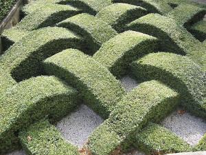 topiary_garden_1ypka