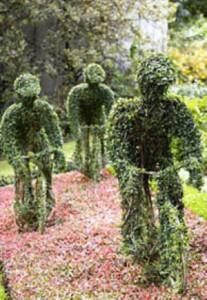 tour_de_france_topiary