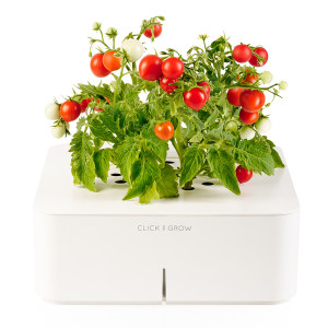 Click & Grow  Electronic Miniature Garden by Mattias Lepp_1