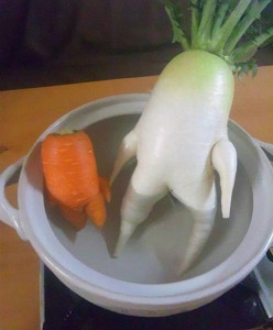 vegetales-identidad25