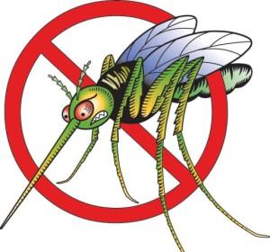 kak-vybrat-ehffektivnoe-i-bezopasnoe-sredstvo-ot-komarov-2