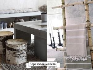 iz-berezy-1
