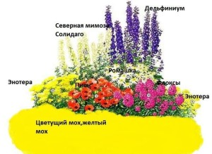 99569114_klumba1-1-