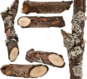 depositphotos_28461951-stock-photo-dry-wood-branches-close-up